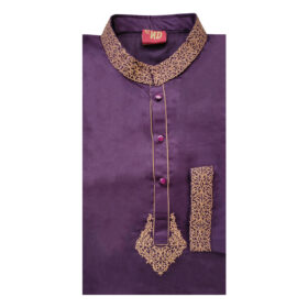 Men's Stylish Purple Panjabi